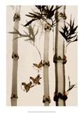 Birds among Bamboo