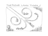 The Flying Lawn Tigers - Cartoon