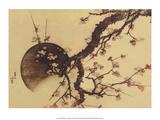 Cherry Blossom Tree with Full Moon