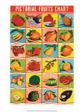 Indian Educational Chart - Pictorial Fruits