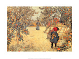 Gathering Apples  1904