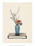 Ikebana  Arrangement of Plum & Variegated Cabbage