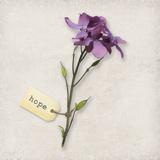 Gift Flower I
