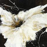 Blanco Flor I