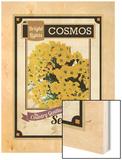 Vintage Cosmos Seed Packet