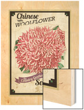Vintage Woolflower Seed Packet