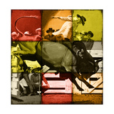 Rodeo in Tiles