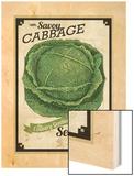 Vintage Cabbage Seed Packet