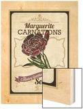 Vintage Carnation Seed Packet