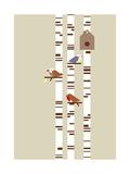 Silver Birch Reproduction d'art par Dicky Bird