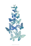 Butterfly Falls I