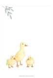 Baby Animals III