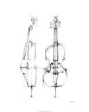 Cello Sketch