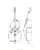 Bass Sketch