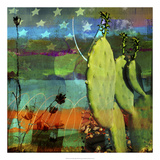 Cactus & Flag Collage