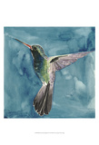 Watercolor Hummingbird II