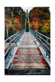 Bridge To The Nature  New Hampshire