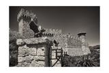 Gargoyles On A Castle Wall