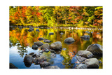 Autumn Foliage River Reflections