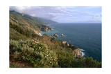 Big Sur Coast Springtime Vista  California