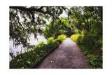 Low Country Walking Path  Charleston SC