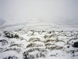 Snow on Shropshire Hills
