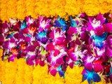 Bangkok Street Flower Market Flowers Ready for Display at Many Places including Temples