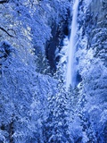 Bridal Vel Falls  Yosemite National Park  California  USA
