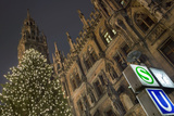 Christmas Tree at Neues Rathaus in Munich