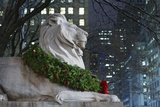New York Public Library Lion Decorated with a Christmas Wreath during the Holidays