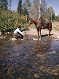 1970S COWBOY IN STREAM KNEELING TRY TO LEAD HORSE INTO WATER
