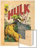 Marvel Comics Retro: The Incredible Hulk Comic Book Cover No109  the Lost Land of Ka-Zar