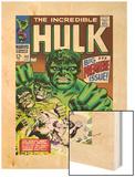 Marvel Comics Retro: The Incredible Hulk Comic Book Cover No102  Big Premiere Issue