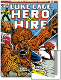 Marvel Comics Retro: Luke Cage  Hero for Hire Comic Book Cover No13  Fighting Lion-fang  Wild Cats