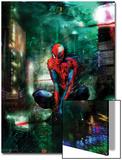 Timestorm 2009/2099 No1 Cover: Spider-Man