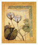 Flores Exoticas y Mapas II