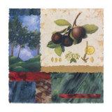 My Orchard III