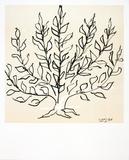 Buisson Reproduction d'art par Henri Matisse