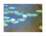 Water Lilies  c1898