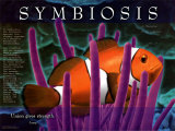 Symbiosis