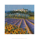 Hill Town  Provence