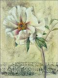 Floral Blush III