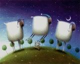 Insomniac Sheep