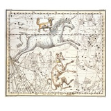 Constellations of Monoceros the Unicorn  Canis Major and Minor from A Celestial Atlas