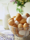 Eggs in a Metal Basket