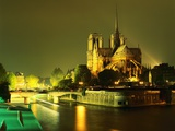 Cathedral of Notre Dame Illuminated at Night