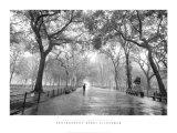 Promenade du poète, Central Park New-York Reproduction d'art par Henri Silberman