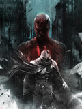 Shadowland: Moon Knight No1 Cover: Moon Knight and Daredevil Walking