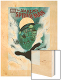 The Amazing Spider-Man No618 Cover: Mysterio