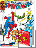 Amazing Spider-Man Annual No1 Cover: Spider-Man
